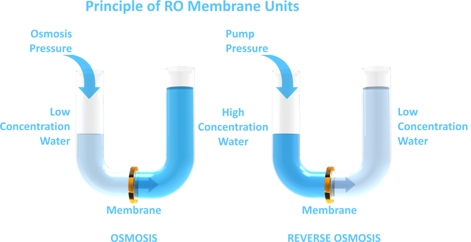 OSMOSIS        REVERSE OSMOSIS  Principle of RO Membrane Units  High Concentration  Water  Low Concentration  Water  Low Concentration  Water  Osmosis  Pressure  Pump Pressure  Membrane  Membrane